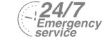 24/7 Emergency Service Pest Control in Lambeth, SE11. Call Now! 020 8166 9746